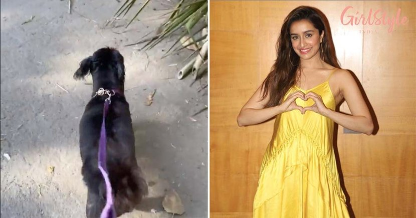 Actress Shraddha Kapoor Takes Her Doggo Shyloh For Walk During Lockdown & Its Adorable